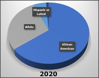 Stats-BLM-2020